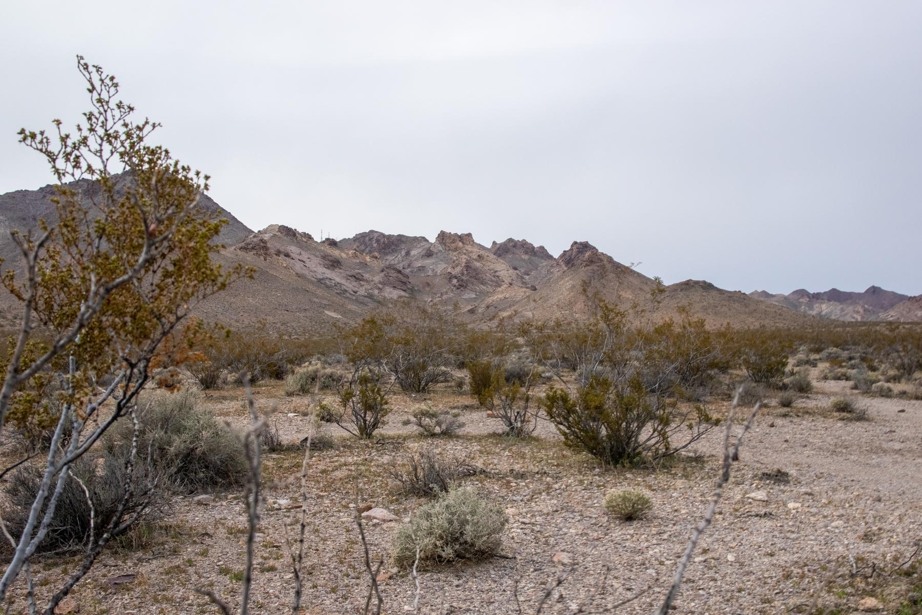 Rhyolite/Beatty, NV